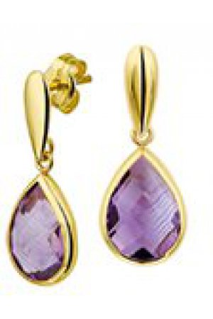 The Jewelry Collection Oorhangers Amethyst - Geelgoud